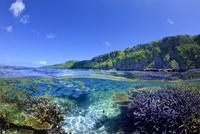 珊瑚礁のある海 01673091986| 写真素材・ストックフォト・画像・イラスト素材|アマナイメージズ