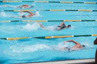 競泳 01676004712  写真素材・ストックフォト・画像・イラスト素材 アマナイメージズ