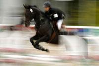 第61回国民体育大会馬術競技大会