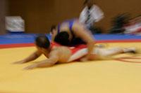 第61回国民体育大会レスリング