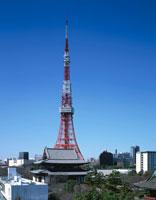 東京タワーと増上寺  東京都