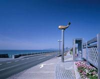 桂浜花海道と道沿いのオブジェ 高知市 高知県 01690010717| 写真素材・ストックフォト・画像・イラスト素材|アマナイメージズ