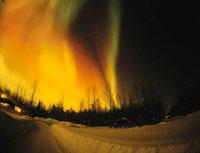 タルトキーナのオーロラ 魚眼 アラスカ州 アメリカ 01702008067| 写真素材・ストックフォト・画像・イラスト素材|アマナイメージズ