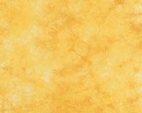 和紙の表面 アブストラクト