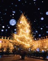 夜のクリスマスツリーの輝きと雪 パリ フランス