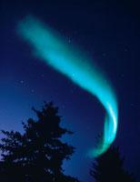 夜空に輝くオーロラ フェアバンクス郊外 アラスカ