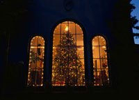 窓から見える室内のクリスマスツリー