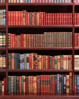 本棚の洋書