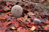 石の鳥 01759000016| 写真素材・ストックフォト・画像・イラスト素材|アマナイメージズ