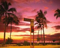 カラカウア通りの夕景 ワイキキ オアフ島 ハワイ