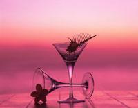 2個のグラスとホネガイとプルメリアの花の夕景 01801001038| 写真素材・ストックフォト・画像・イラスト素材|アマナイメージズ