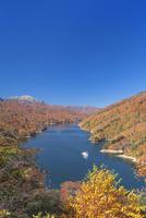 紅葉の奥只見湖と遊覧船 01801016615  写真素材・ストックフォト・画像・イラスト素材 アマナイメージズ