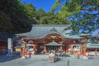 熊野那智大社 01801016793| 写真素材・ストックフォト・画像・イラスト素材|アマナイメージズ