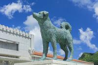 阿嘉島(あかじま)のシロの像