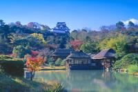 秋の玄宮園と彦根城 01801019085| 写真素材・ストックフォト・画像・イラスト素材|アマナイメージズ