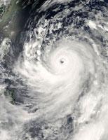 マンニィ台風