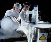 冷凍保存されたバクテリア
