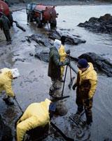 石油汚染清掃