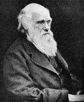 チャールズ・ダーウィン 01809011181| 写真素材・ストックフォト・画像・イラスト素材|アマナイメージズ