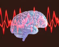 脳波 01809011489  写真素材・ストックフォト・画像・イラスト素材 アマナイメージズ