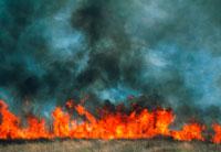 森林の火事 01809016560| 写真素材・ストックフォト・画像・イラスト素材|アマナイメージズ