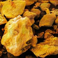 Turmeric powder,SEM