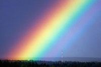 Rainbow over trees 01809025717  写真素材・ストックフォト・画像・イラスト素材 アマナイメージズ
