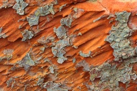 Desert minerals, Egyptian Sahara
