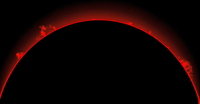Solar prominences, H-alpha image