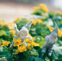 花と丘の妖精人形のアップ フォトイラスト 美瑛
