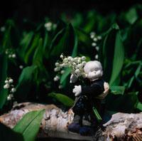 スズランの花と丘の妖精人形のアップ フォトイラスト 美瑛