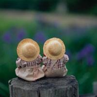丸太上の後姿の丘の妖精人形のアップ フォトイラスト 美瑛