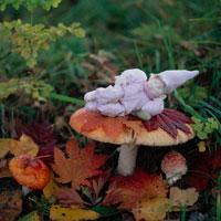紅葉ときのこと丘の妖精人形のアップ フォトイラスト 美瑛