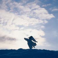 空と雲と丘の妖精人形 フォトイラスト 美瑛 北海道