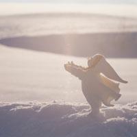 雪上の丘の妖精人形のアップ フォトイラスト 美瑛 北海道