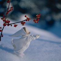雪とツルウメモドキの実と丘の妖精人形のアップ フォトイラスト