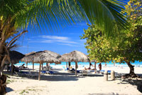 ヤシの木とバラデロビーチ 01844010929| 写真素材・ストックフォト・画像・イラスト素材|アマナイメージズ