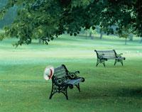緑の公園のベンチに白い帽子   ナイアガラ カナダ