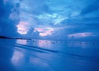 サンダルズの海・夕暮れ ニューブロビデンス島 バハマ