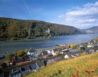 秋のライン川とラインシュタイン城   ドイツ