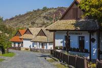 ホッロークー村
