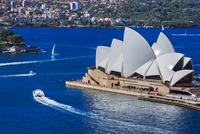 シドニー・オペラハウス 俯瞰