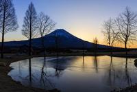 ふもとっぱらから望む富士山 夜明け