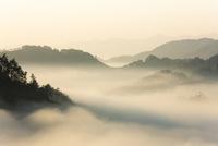 天遊峰からの眺望/雲海