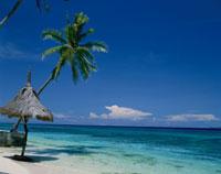 タンブリビーチ マクタン島 セブ フィリピン