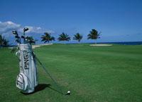 ゴルフコースとゴルフバック ワイコロア ハワイ 01917040918| 写真素材・ストックフォト・画像・イラスト素材|アマナイメージズ