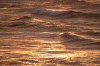 オアフ島の夕景の海  ハワイ