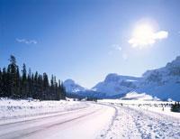 バンフ国立公園の雪のアイスフールド・パークウェイ アルバータ