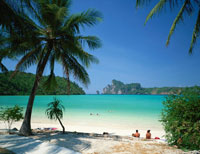 ヤシの木とロダラムビーチ   タイ