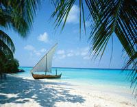 砂浜のセーリングドーニ モルジブ